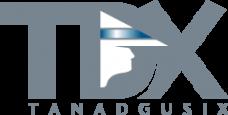 tdx logo